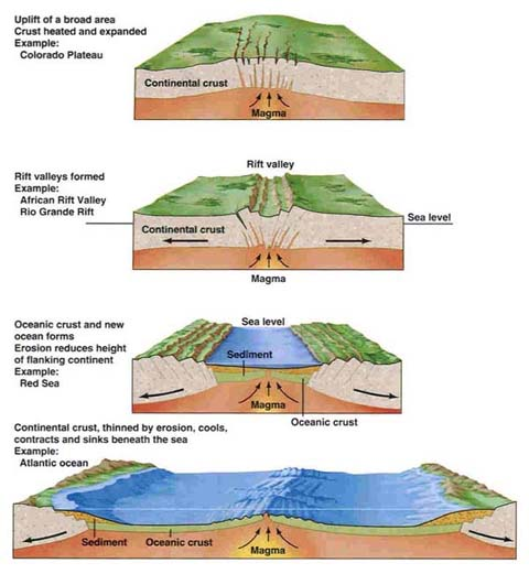 geology 101 oceans study guide Study guide final exam bio 101 fall 2014 review material (similar to previous guides) know what (in a basic sense) a cell is what is cell theory know what eukaryotic or prokaryotic cells are know the basic structures possessed by these cells know their similarities and differences know the.