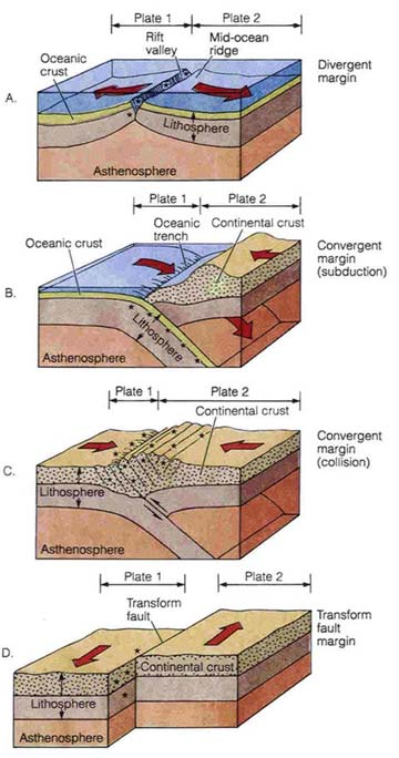 Types Of Plate Boundaries Diagram Tectonic Plate Boundary Models By